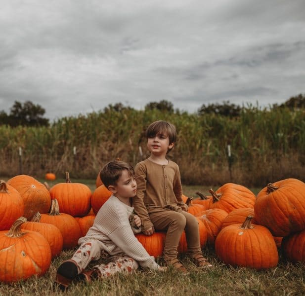 pumpkinpatch2