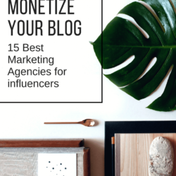 How to monetize your blog: 15 great influencer database agencies
