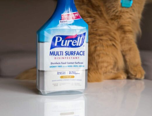 purell autism mom blog gojo cleaning product