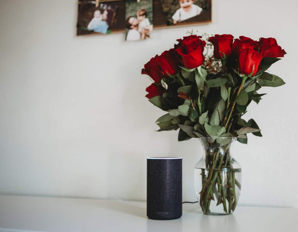 amazon echo autism mom blog alexa